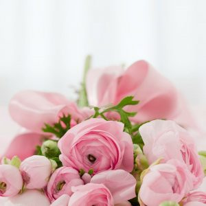roses, bouquet, congratulations